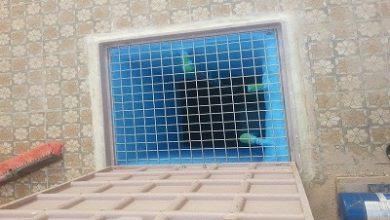 Photo of حل مشكلة تسربات المجاري علي الخزان 0555717947